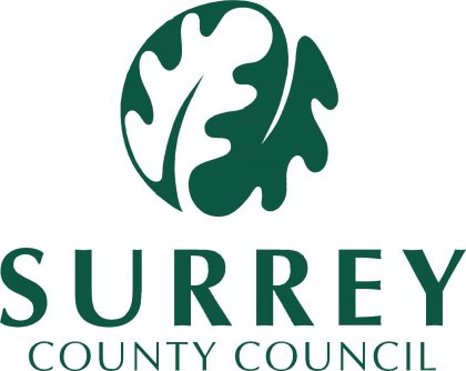Surrey County Council 252 corp logo 336